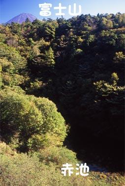 赤池、富士五湖の幻の湖(富士六...